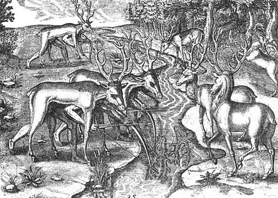 Theodor De Bry Photograph - Native American Indians Camouflaged by Photo Researchers