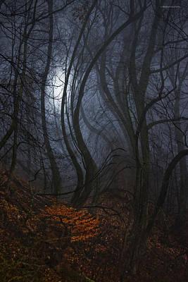 Night Walks Print by Ron Jones
