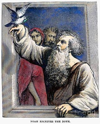 Noah Receives The Dove Print by Granger