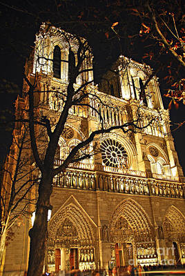 Illumination Photograph - Notre Dame De Paris by Elena Elisseeva