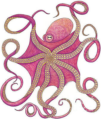 Scuba Diving Drawing - Octopus by Carol Lynne