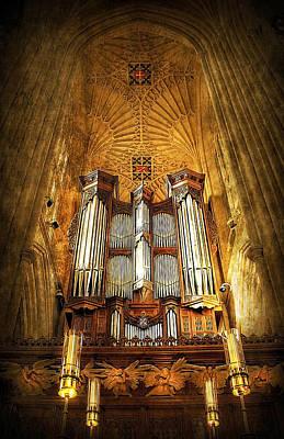 Organ Print by Svetlana Sewell