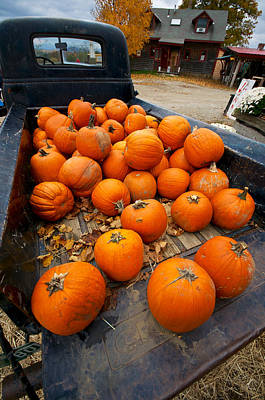Pumpkins In The Back Print by Mike Horvath