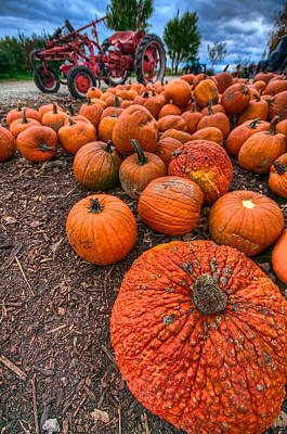 Pumpkins Print by Mike Horvath