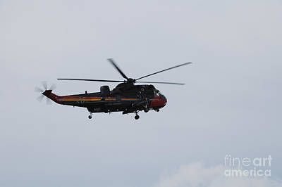 Sea King Helicopter Of The Belgian Army Print by Luc De Jaeger
