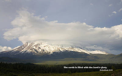 Pause Photograph - Shasta Spring by Mick Anderson