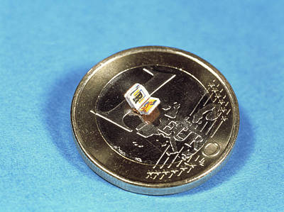Smallest Book Print by Volker Steger