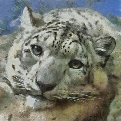 Leopard Digital Art - Snow Leopard Painterly by Ernie Echols