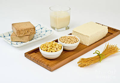 Soy Products Print by Photo Researchers