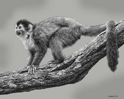Squirrel Monkey Print by Larry Linton