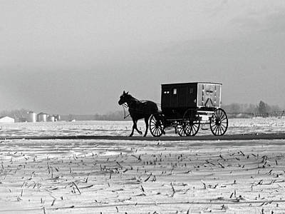 Rural Photograph - Stark Winter Buggy by David Arment