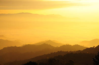 Sunrise Over Black Forest Mist  Original by Preecha Sirima