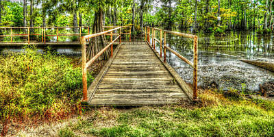Swamp Dock Print by Ester  Rogers