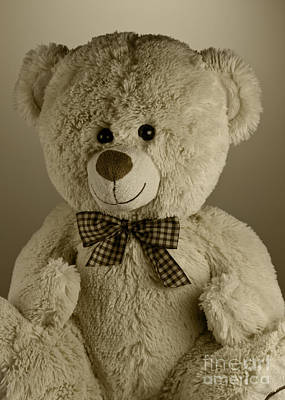 Doll Photograph - Teddy Bear by Blink Images