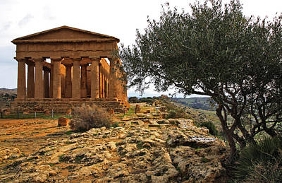 Temple Of Concordia Print by Steve Bisgrove