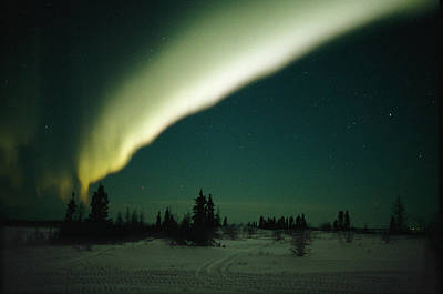 The Aurora Borealis Glows Brightly Print by Norbert Rosing
