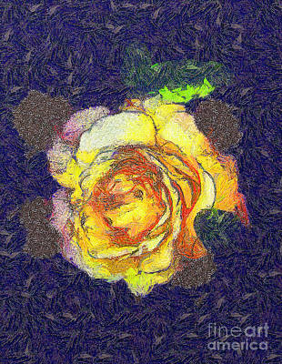 The Rose Print by Odon Czintos