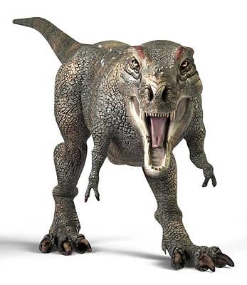 Tyrannosaurus Rex Dinosaur Print by Roger Harris