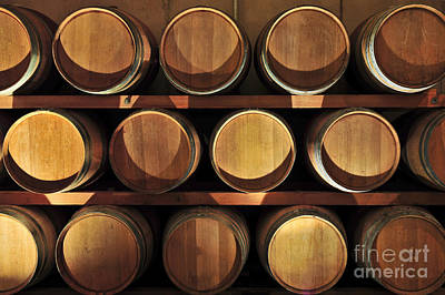 Winery Photograph - Wine Barrels by Elena Elisseeva