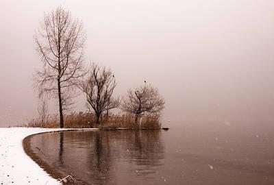 Tessin Photograph - Wintertrees by Joana Kruse