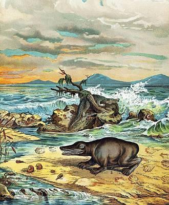 Triassic Photograph - 1888 Giant Amphibian Of Triassic Coast by Paul D Stewart