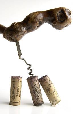 Indoor Photograph - Corks Of French Wine. by Bernard Jaubert