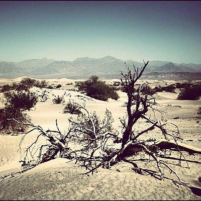 Desert Photograph - Death Valley by Luisa Azzolini