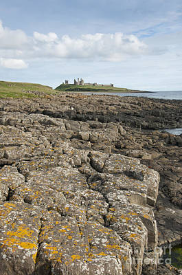 Landscape Photograph - Dunstanburgh Castle by Andrew  Michael