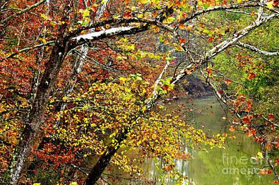Fall Along West Fork River Print by Thomas R Fletcher
