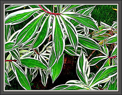 Leaves Print by Anand Swaroop Manchiraju