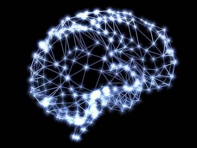 Human Brain Photograph - Neural Network by Pasieka