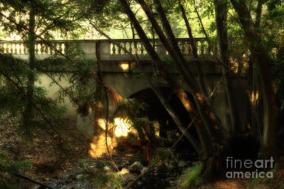 Pedestrian Bridge And Strawberry Creek  . 7d10132 Print by Wingsdomain Art and Photography