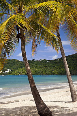 Turquois Water Photograph - Saint Thomas by Brian Jannsen