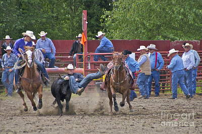 Lightcapes Photograph - Steer Wrestler by Sean Griffin
