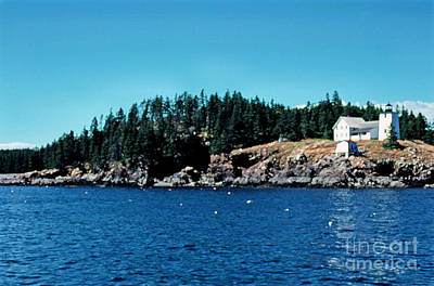 Swans Island Lighthouse Print by Thomas R Fletcher