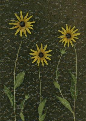 Three Yellow Flowers Print by Deddeda