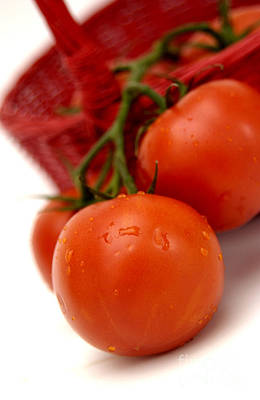Tomato Photograph - Tomatoes by Bernard Jaubert