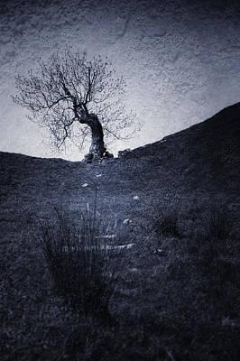 Dark Side Mixed Media - Tree by Svetlana Sewell