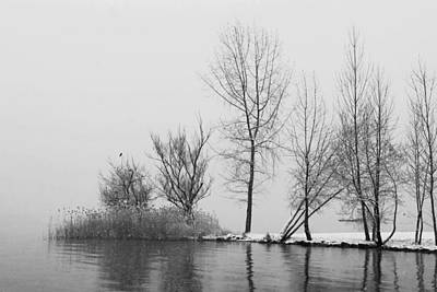 Wintertrees Print by Joana Kruse