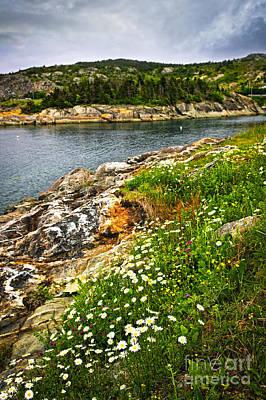 Sea Photograph - Atlantic Coast In Newfoundland by Elena Elisseeva