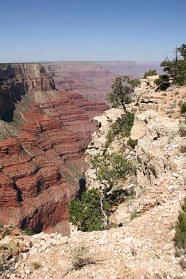 Grand Canyon National Park Arizona Usa Print by Audrey Campion