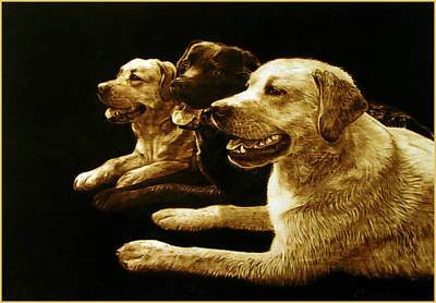 Pirogravura Pyrography - 3 Hot Dogs Please by Dino Muradian
