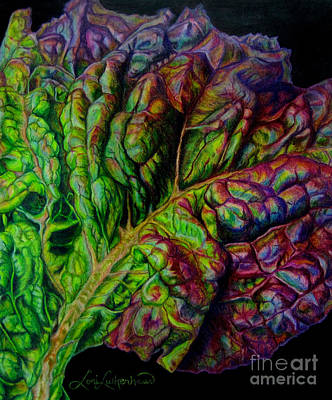 Lettuce Drawing - Wilting Beauty by Lori Lutkenhaus