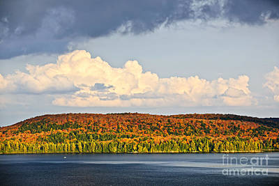 Fall Forest And Lake Print by Elena Elisseeva