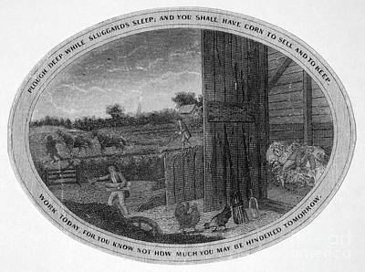 Horse-drawn Plow Photograph - Poor Richard Illustrated by Granger