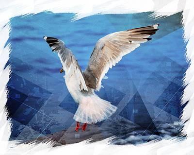 Birds Photograph - Seagull by Debra  Miller
