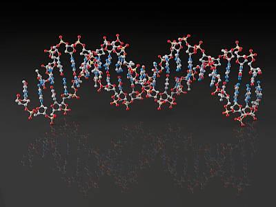 Dna Molecule, Artwork Print by Laguna Design