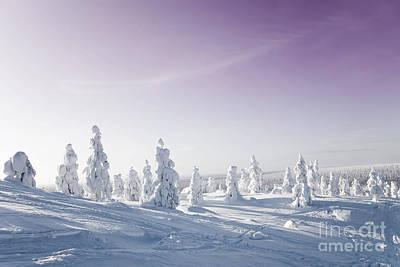 Winter Print by Kati Molin