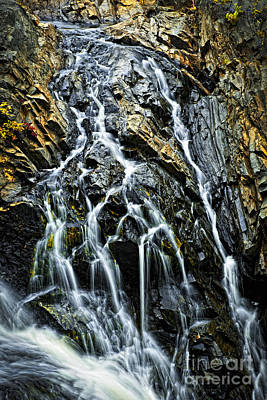 Waterfall Print by Elena Elisseeva