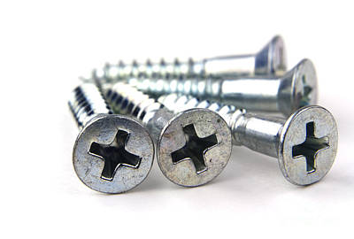 Hardware Photograph - Silver Screws by Blink Images
